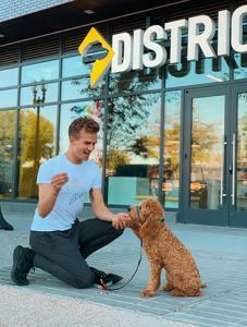dog trainer outside in Navy Yard