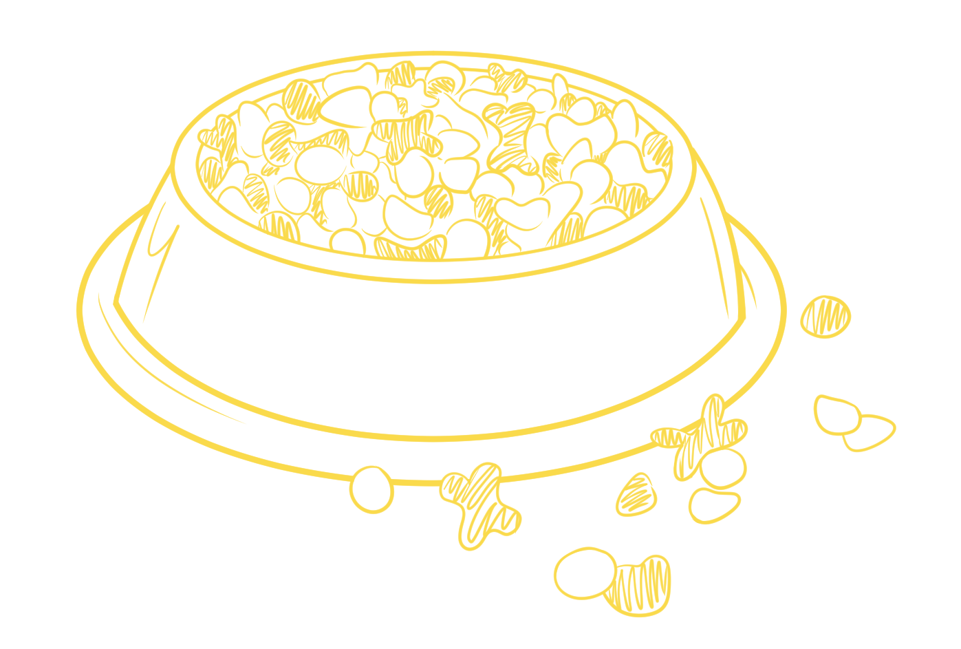 dog bowl yellow