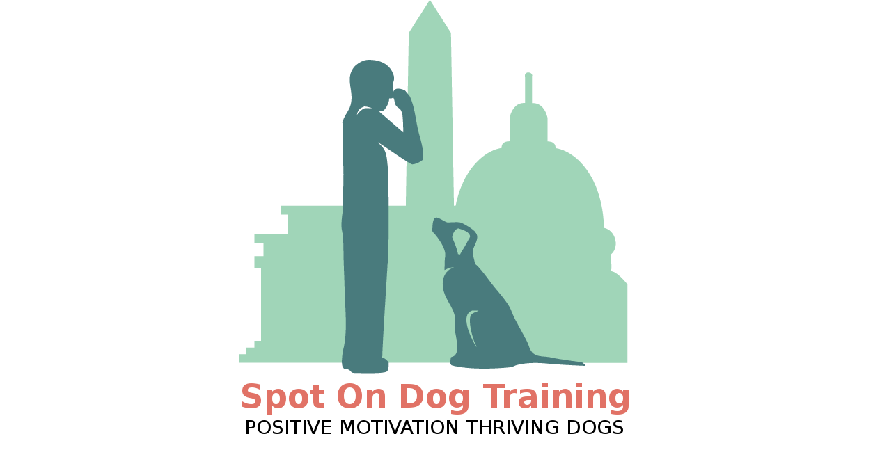 Spot On Dog Training