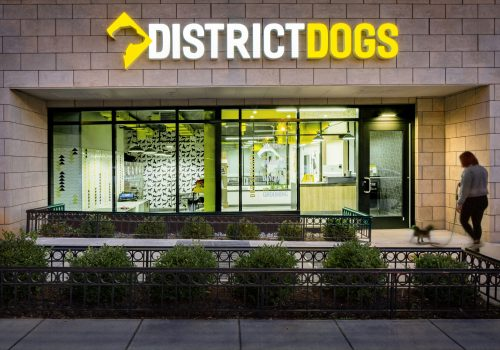 District Dogs Shaw